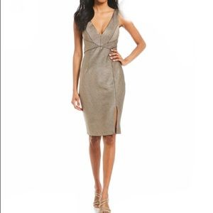 Adrianna Papell Rose Gold Dress